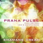 Prana-Pulse